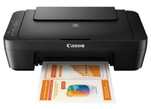 Canon Printer MG2500S